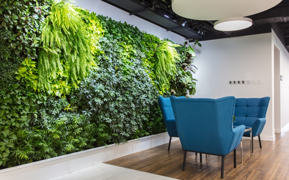Living green wall from Shutterstock